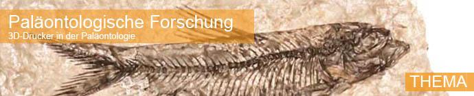 Thema Titelbild: 3D-Drucker in der Paläontologie zeigt Fossil eines Fisches