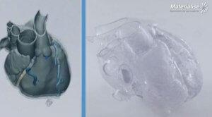 Herz 3D-Drucker