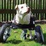 Rollstuhl aus dem 3D-Drucker
