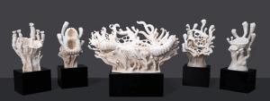 Korallen aus dem 3D-Drucker