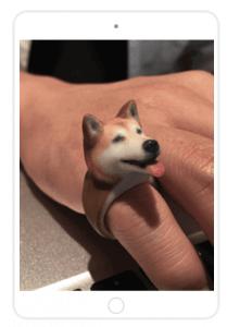 Ringpet 3D-Druckring