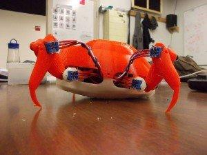 Roboter-Krabbe