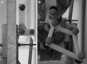 Forschungen an Knieproblemen mit dem 3D-Drucker