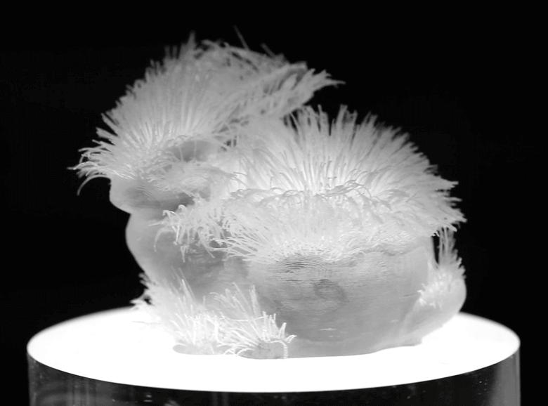 Haare aus 3D-Drucker