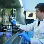 Bioprinting-Maschine (Biodrucker)