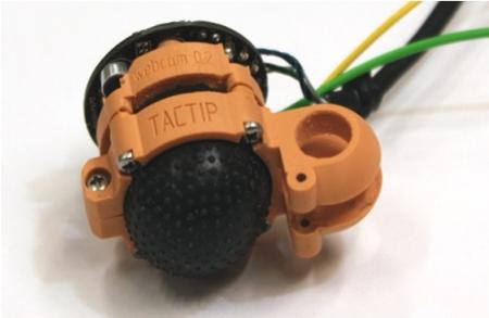 TacTip Prototyp.