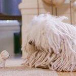 Hund Beast mit Miniaturversion.