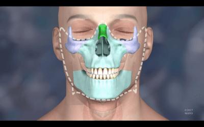 Computerbild des Gesichts