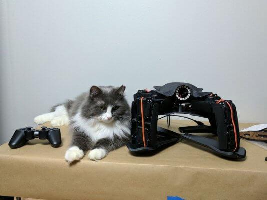 Größenvergleich Roboter und Katze.