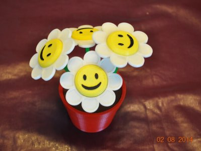 Smiley-Blumen