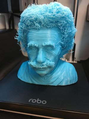 Büste Einsteins