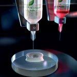 CollPlant Biotinte während des Drucks