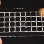 Glasschieber mit Teflonbeschichtung, Wachsgitter und Antikörper-Array