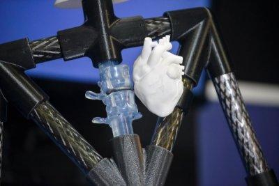 innere Organe 3D-Druck