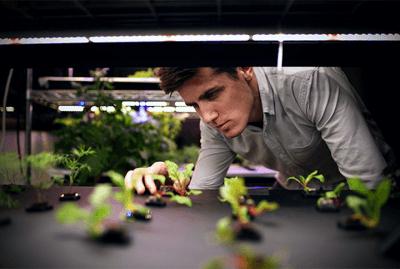 Andrew Shearer CEO von Farmshelf