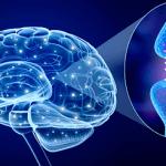 Parkinson Zittern