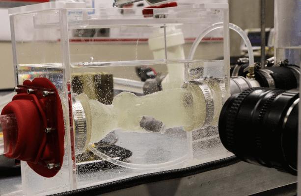 3D-gedruckte Aorta wird in Simulator getestet