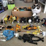 Die sieben Vorgängerversionen der Open Cat