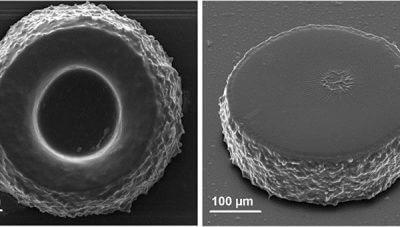 Fortschritte der Zwei-Photonen-Lithographie