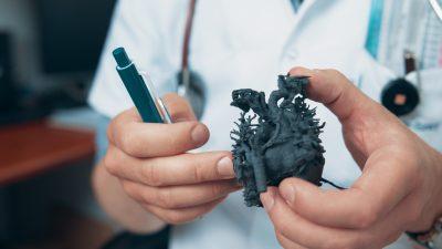 Arzt mit Kordians 3D-gedruckter Herz-Kopie