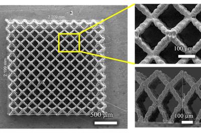 REM-Aufnahmen von 3D-gedruckten Elektroden