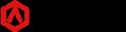 Logo Raise3D