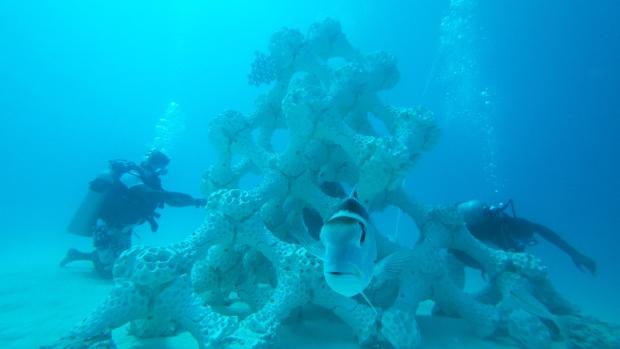 Künstliche Korallen