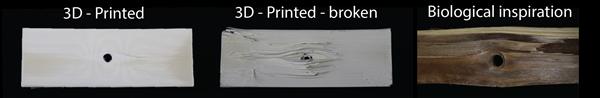 3D-gedruckte Proben mit Drucklinien