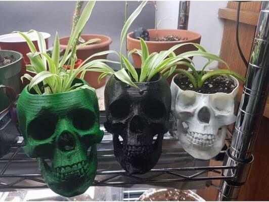 Totenkopf-Blumentopf