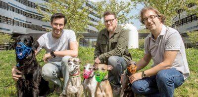 Entwickler und ihre Hunde