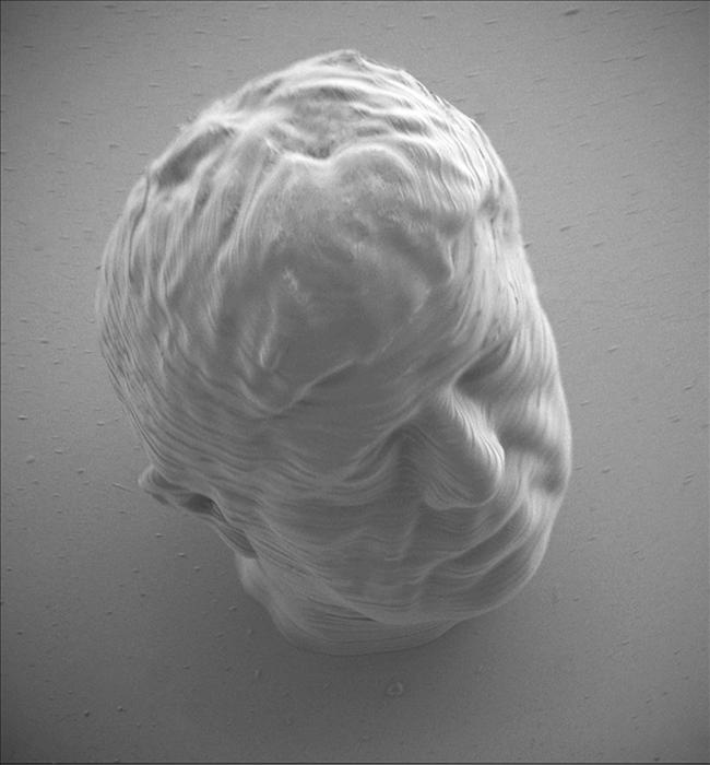Mikroobjekt aus dem 3D-Drucker