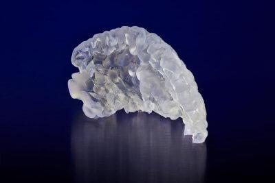 3D-gedruckter präfrontaler Kortex