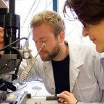 Forscher am KIT bei der Fertigung