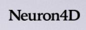 Neuron4D Logo