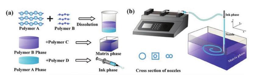 Schema zum 3D-Druck mit hydrophilen Polymeren