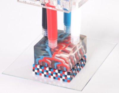 Objekt mit dem Multimaterial-Multinoozle-3D-Druckverfahren hergestellt