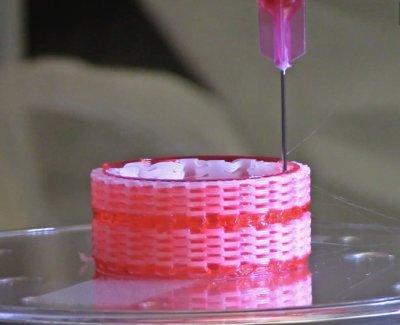 Trachea-Konstrukt auf integriertem Tissue Organ Drucker von WFSIRM