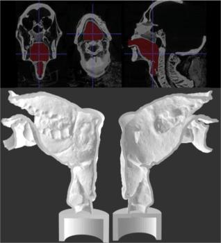 3D-Druck Stimmapparat