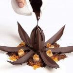 Flor de Cacao Schokoladenblume