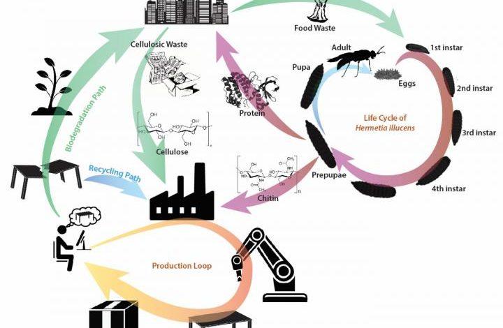 Forscher aus Singapur arbeiten an einer Methode zur Gewinnung von 3D-Druckmaterialien aus Abfällen