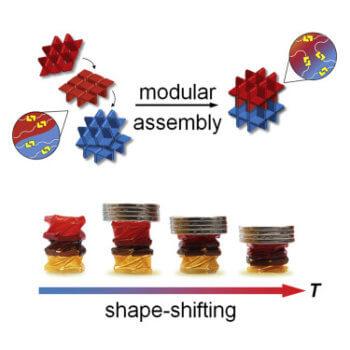 Grafische Darstellung des Konzepts
