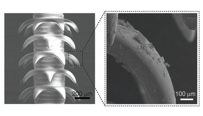 4D-gedruckte Mikronadeln