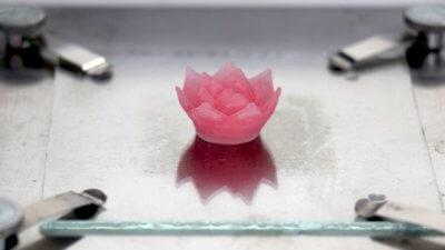 Lotusblüte aus Aerogel