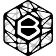 Branch Technology Logo
