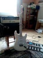 Selbst gebaute E-Gitarre