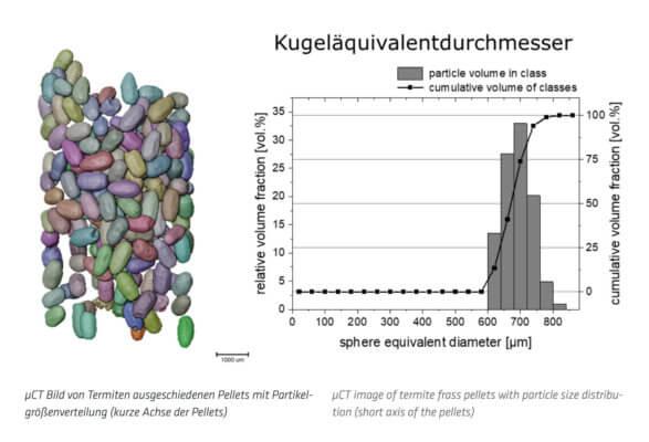 Bild von Pellets mit Partikelgrößenverteilung
