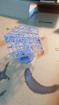 Testdruck mit dem Anycubic Photon Mono