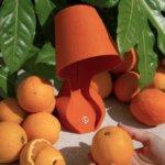 Ohmie und Orangen